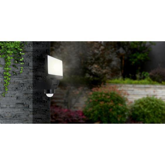 LED-Außenstrahler Darius 20 W 1600 lm