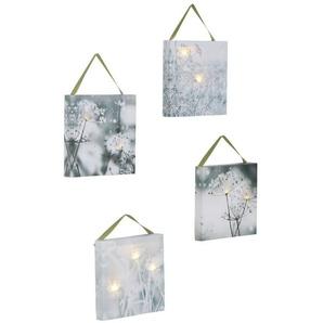 heine home LED Bilder 4er-Set, mit vereisten Blüten