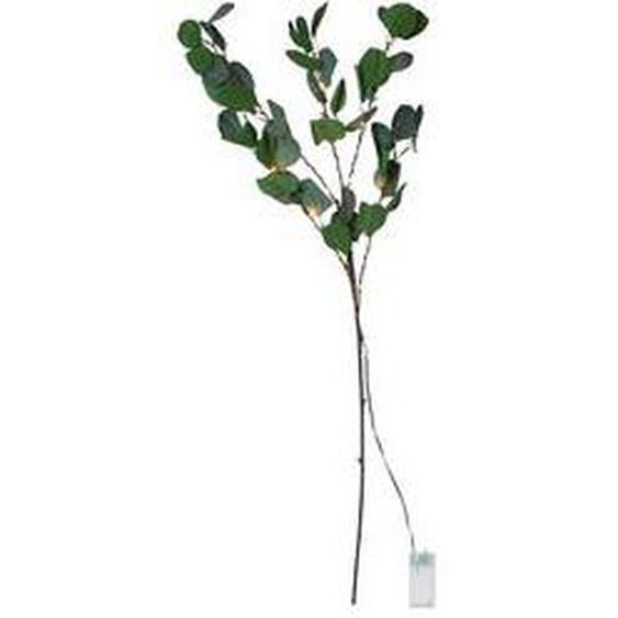 LED-Eukalyptuszweig, Star