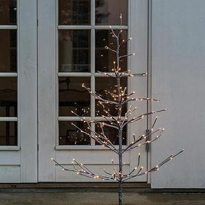 LED-Lichterbaum Alex Tree Sirius braun, 120 cm