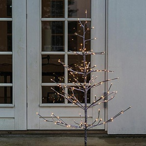 LED-Lichterbaum Alex Tree Sirius braun, 180 cm
