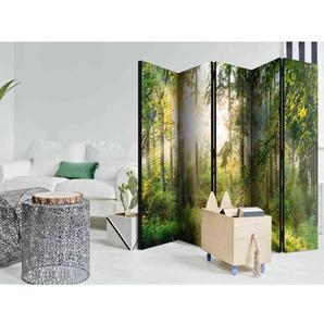 Leinwand Paravent mit Wald Motiv 225 cm breit