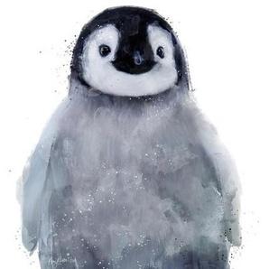 Little Penguin - Leinwandbild