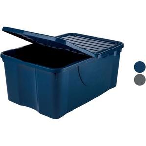 Livarno Home Aufbewahrungsbox mit Faltdeckel, 40 L
