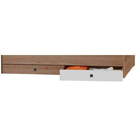 Livetastic Bettkasten 100/16/60 cm Weiß, Braun , Kunststoff , 100x16x60 cm