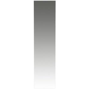 : Spiegel, B/H/T 42 170 3