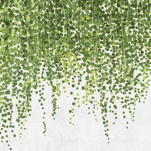living walls Fototapete Walls by Patel Hanging Garden 1 B/L: 4 m x 2,7 m, St. grün Fototapeten Tapeten Bauen Renovieren