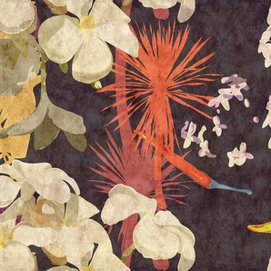 living walls Fototapete Walls by Patel Vintage Bouquet 1 B/L: 5 m x 2,7 m, St. bunt Fototapeten Tapeten Bauen Renovieren