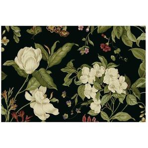 Matt Fototapete Gartenblumen auf Schwarz I 2,9 m x 432 cm