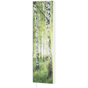 Mehrzweckschrank   grün   48 cm   191 cm   20 cm   Möbel Kraft