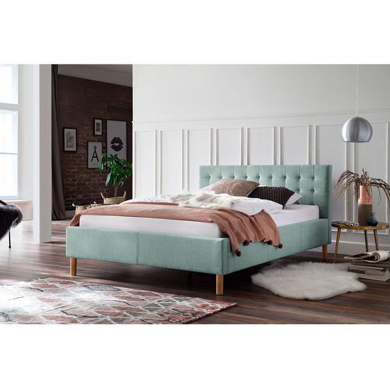 meise.möbel Polsterbett Malin 120x200 cm Holzwerkstoff Eisblau Skandi