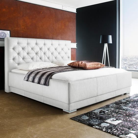 meise.möbel Polsterbett Pisa 160x200 cm Kunstleder Weiß