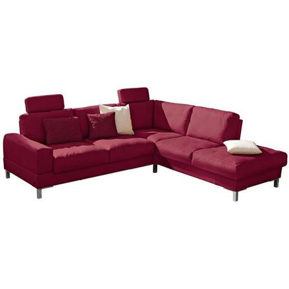 Musterring Wohnlandschaft Rot Echtleder , Leder , 4-Sitzer , 242 cm