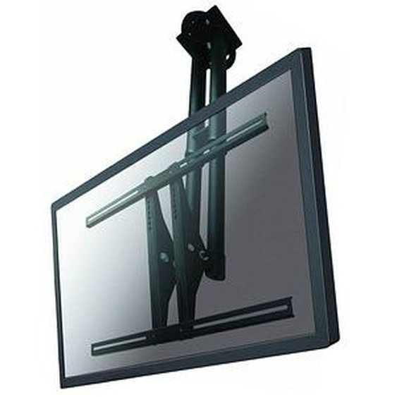 NEWSTAR TV-Deckenhalterung PLASMA-C100 schwarz