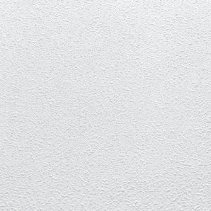 Deckenpaneele »(80 Platten)«