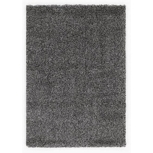 HOCHFLORTEPPICH 240/340 cm  Grau, Silberfarben, Hellgrau, DunkelgrauNovel: HOCHFLORTEPPICH 240/340 cm  Grau, Silberfarben, Hellgrau, Dunkelgrau