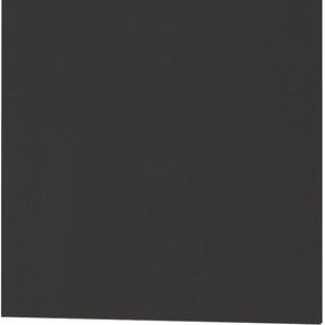 OPTIFIT Tür für vollintegierbaren Geschirrspüler »Bern«, Höhe 70 cm
