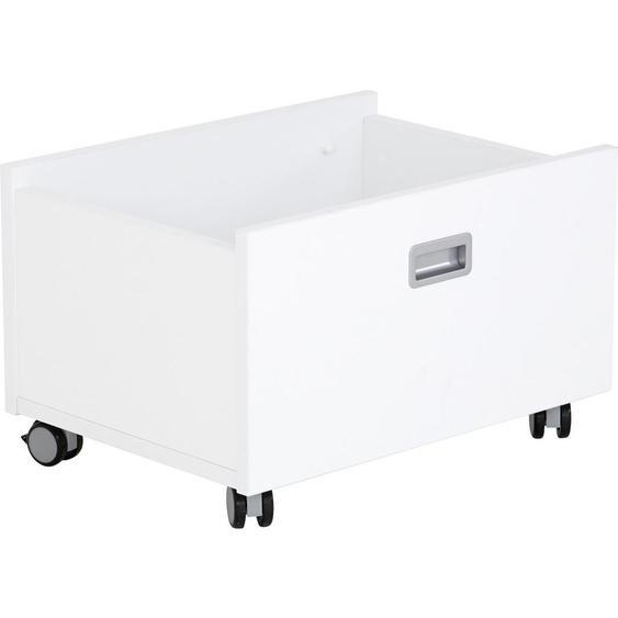 Paidi Rollbox , Weiß , 65x40x47 cm