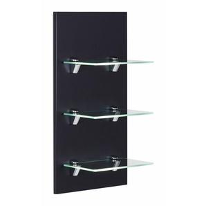 Panel VIVA Badregal schwarz seidenglanz mit 3 Glasablagen