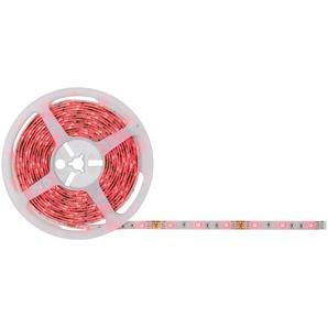 Paulmann LED-Streifen-Komplettset SimpLED mehrfarbig 5 m 505 lm 24 W mit Stecker