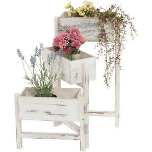 Pflanzregal, Standregal Blumenstnder, Hhe: 65cm Shabby-Look Vintage ~ wei