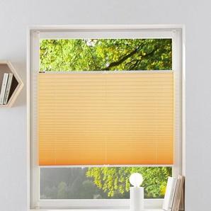 Plissee »LAHOLM«, my home, Lichtschutz, ohne Bohren, verspannt, im Fixmaß, über 1.400 positive Bewertungen