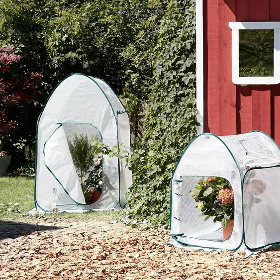 Pop-up-Pflanzenschutzzelt - Transparent -