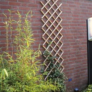 Rankgitter Greig aus Bambus