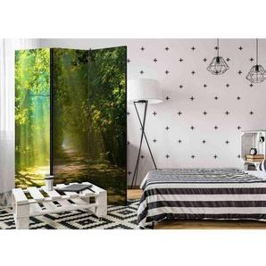 Raumteilerparavent mit Wald Motiv beidseitig bedruckt