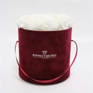 Rosenbox Hutschachtel bordeaux mit 18-20 weißen Rosen