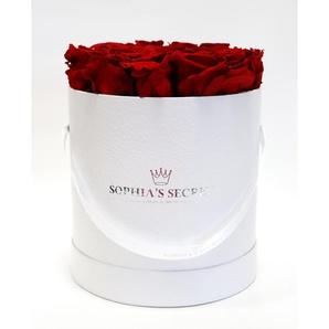 Rosenbox Hutschachtel weiß mit 10-12 roten Rosen