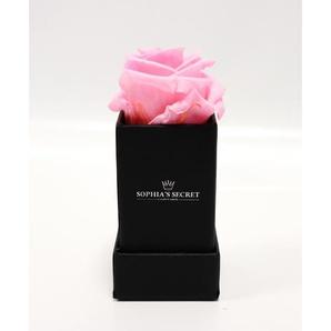 Rosenbox schwarz mit rosa Rosenkopf