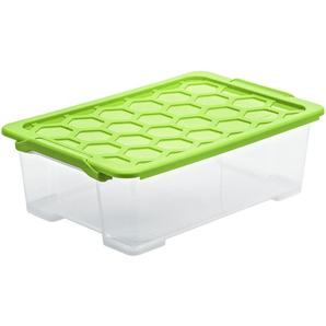 Rotho Aufbewahrungsbox mit Deckel - grün - Kunststoff - 39,5 cm - 18,5 cm   Möbel Kraft