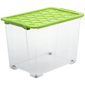 Rotho Aufbewahrungsbox mit Deckel - grün - Kunststoff - 39,5 cm - 41,2 cm   Möbel Kraft