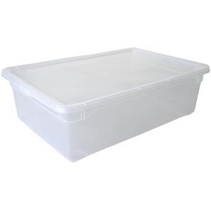 Rotho Aufbewahrungsbox mit Deckel ¦ weiß ¦ Kunststoff ¦ Maße (cm): B: 37,5 H: 16 Aufbewahrung  Aufbewahrungsboxen  sonstige Aufbewahrungsmittel - Höffner