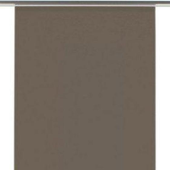 Schiebegardine »Flächenvorhang Entry mit silbernen Paneelwagen«, GARDINIA, Paneelwagen (1 Stück), HxB: 245x60