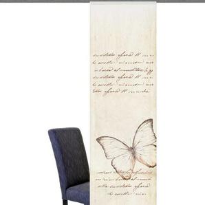 Schiebegardine »Kolari«, HOME WOHNIDEEN, Klettband (1 Stück), inkl. Beschwerungsstange