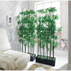 Schneider Künstliche Zimmerpflanze, Maße (B/T/H): 20/50/140 cm B/H: 20 x 140 grün Zimmerpflanzen Kunstpflanzen Wohnaccessoires Zimmerpflanze