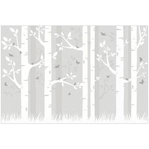 Halbglänzende Tapete Birkenwald mit Schmetterlingen und Vögel