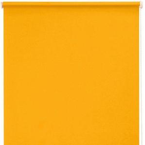 Seitenzugrollo »One size Style uni Verdunkelung«, sunlines, verdunkelnd, freihängend, Made in Germany