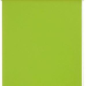 Seitenzugrollo »Uni«, sunlines, Lichtschutz, mit Bohren, 1 Stück