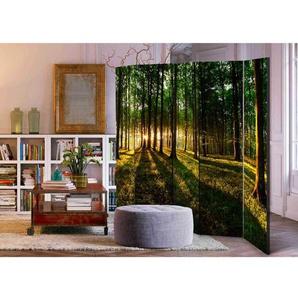 Spanischer Raumteiler mit Wald Motiv bei Sonnenaufgang 225 cm breit