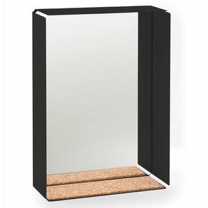 Spiegelbox Oppice