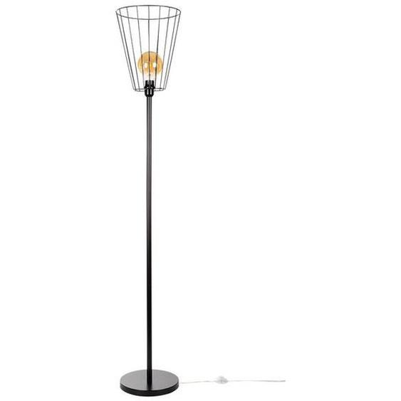 SPOT Light Stehlampe »Swan«