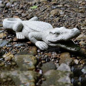 Statue Krokodil Lockhart