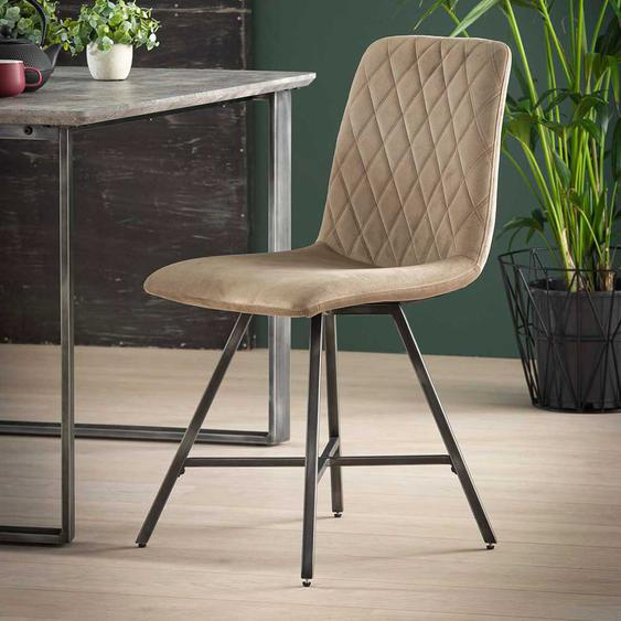 Stühle in Beige Samt Metallgestell (4er Set)