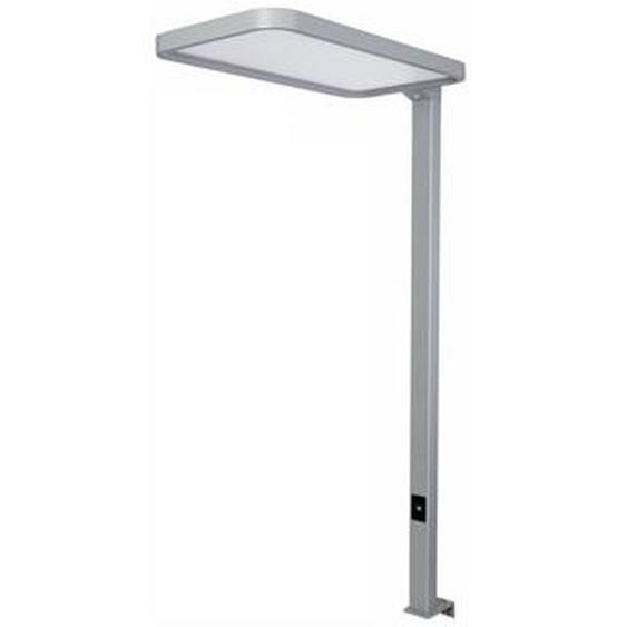 STUDIO DESK   LED Tischleuchte - Lampe Weissaluminium
