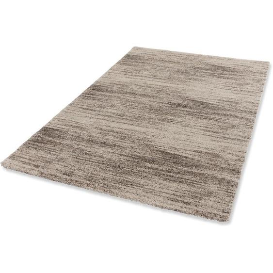 Teppich, Savona 201, ASTRA, rechteckig, Höhe 20 mm, maschinell gewebt 6, 200x290 cm, mm beige Shaggy-Teppiche Hochflor-Teppiche Teppiche