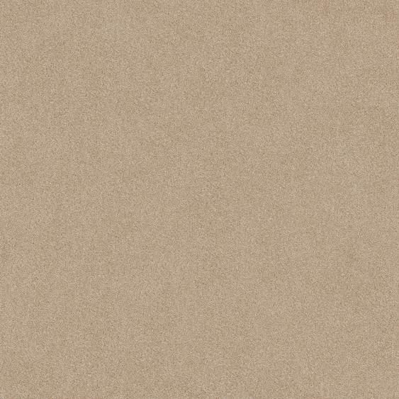 Teppichfliese Forest, quadratisch, 9 mm Höhe, selbstliegend B/L: 50 cm x cm, 20 St. beige Teppichfliesen Bodenbeläge Bauen Renovieren