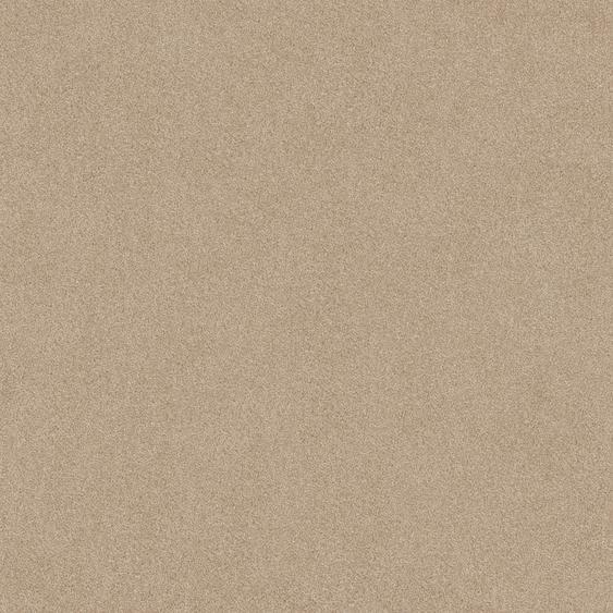 Teppichfliese Forest, quadratisch, 9 mm Höhe, selbstliegend B/L: 50 cm x cm, 4 St. beige Teppichfliesen Bodenbeläge Bauen Renovieren